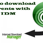 download torrent files with idm superfast